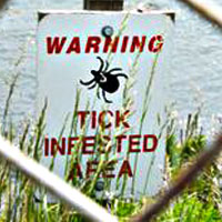 Lyme Disease Facts